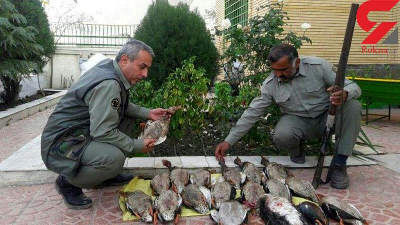 تلخ ترین عکس از کشتار مرغابی سرسبز در خلیج گرگان!