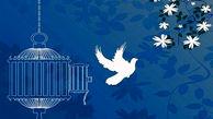 آزادی 6 زندانی در کهگیلویه و بویراحمد