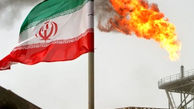 جزییات عجیب از بازداشت 17 جاسوس نفتی ایران / میثم شرفی:حس بازیگری فیلم های جاسوسی داشتم!
