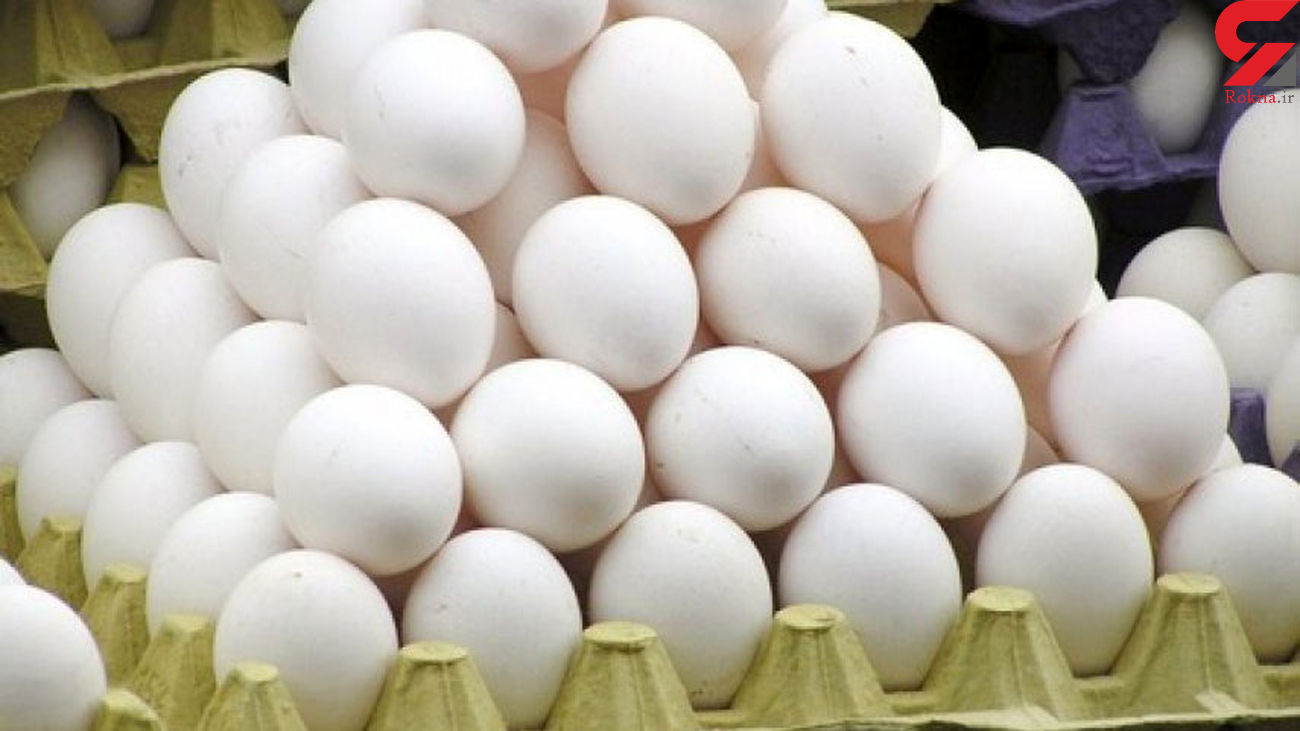 قیمت تخم مرغ در بازار امروز یکشنبه ۱۱ خرداد