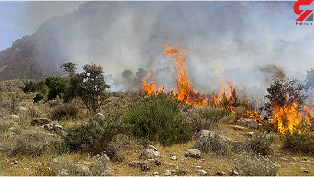 آتش سوزی های سریالی به دماوند رسید!