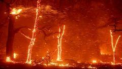 شمار کشتههای آتش سوزی کالیفرنیا به ۴۲ تن افزایش یافت