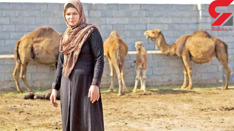 این زن سرسخت شتردار ایرانی بدون شترهایش نمی تواند زندگی کند +عکس