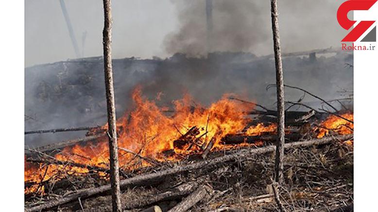 مهار اتش سوزی وسیع در جنگل های آرژانتین