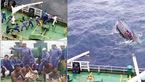 عملیات معجزه آسای کشتی ایرانی در توفان اقیانوس هند /5 نفر در حال مرگ بودند  +عکس های لحظه حادثه