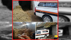 انتشار عکس جنازه مرد گیلانی در انبار کاه / قاتل مشت محکمی داشت + جزییات