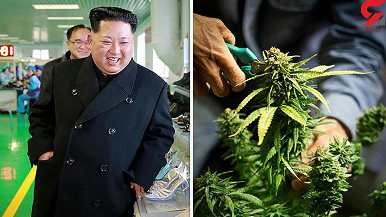 عجیب ترین قانون در کره شمالی!