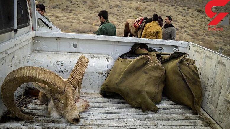 ۱۴۳ متخلف محیط زیست در قزوین دستگیر شدند
