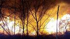 آتشسوزی در مراتع شیببندان جویبار + تصاویر
