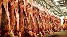 گوشت بیکیفیت وارداتی در سفره ایرانی