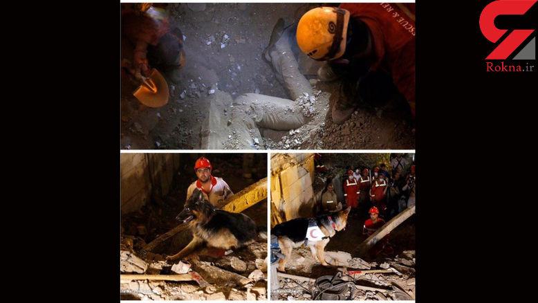 جسد زنده به گور شده یک تهرانی کشف شد+ عکس