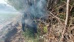 36 عکس از لحظه مهار آتشسوزی در باغهای خلخال