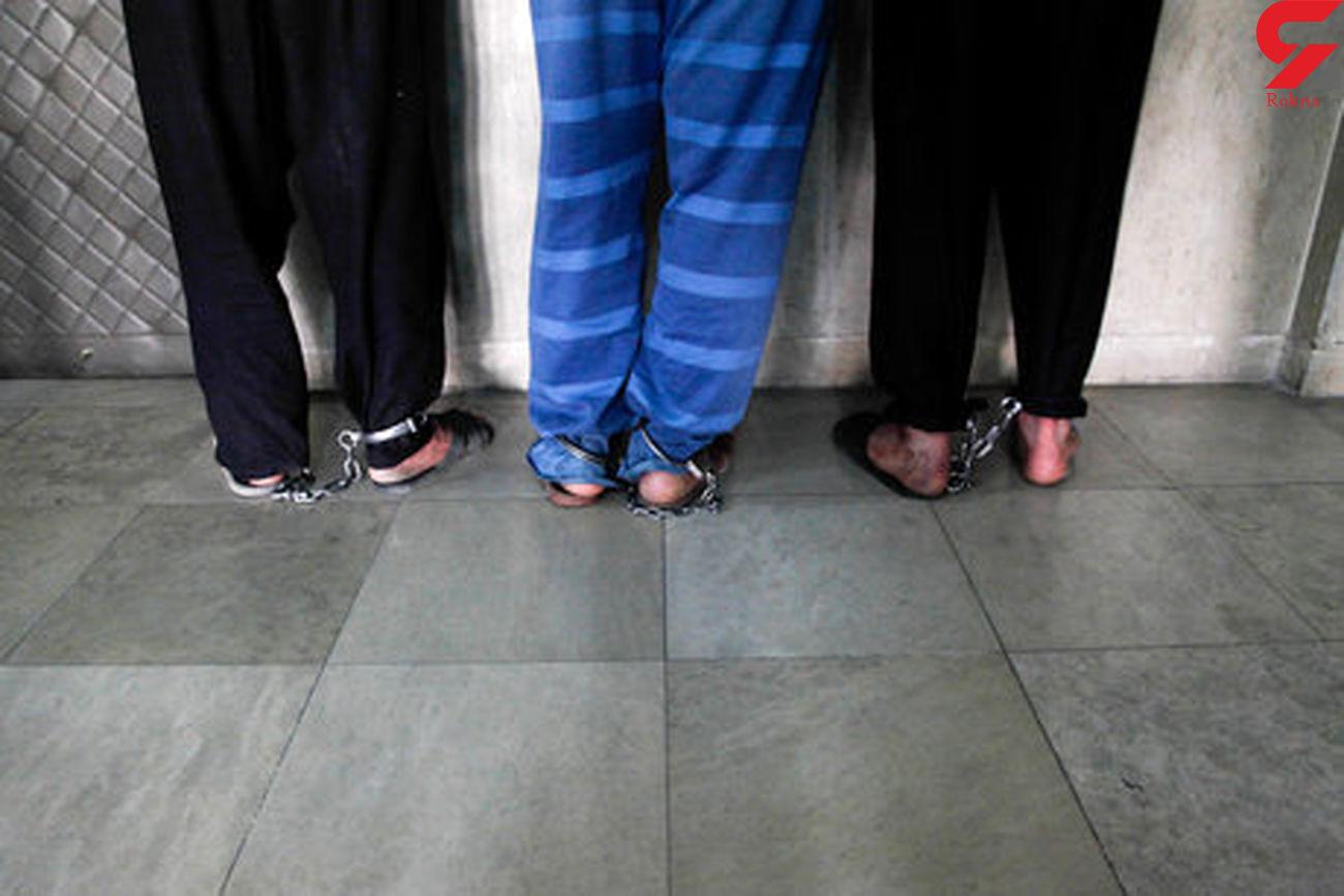 دستگیری 16 سارق در شهرستان تویسرکان