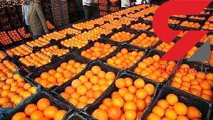 نیازی به واردات میوه نداریم/ ذخیرهسازی پرتقال از تولید داخلی