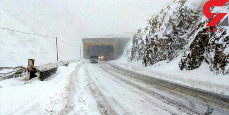 بارش سنگین برف در محور کرج - چالوس + فیلم