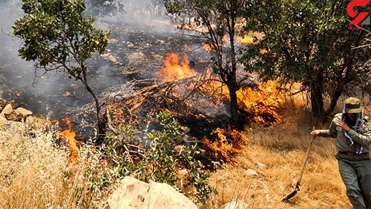 آتش سوزی کوه توبش غربی در استهبان