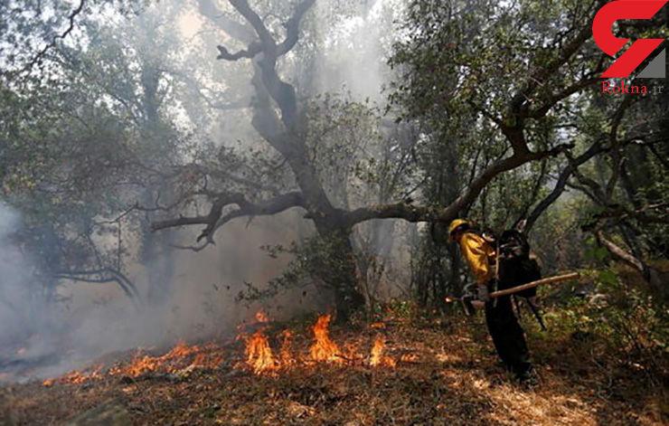 آتش در کالیفرنیا چند خانه را تخریب کرد