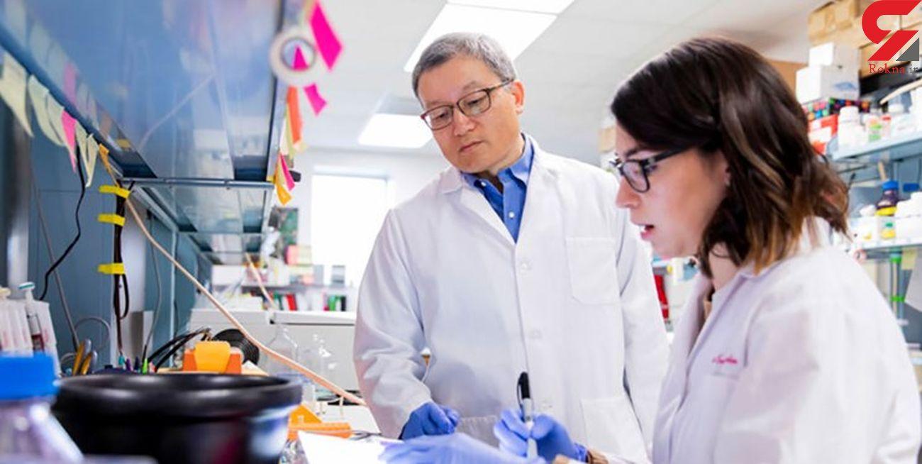کشف یک آنتیبادی که کرونا را مسدود میکند