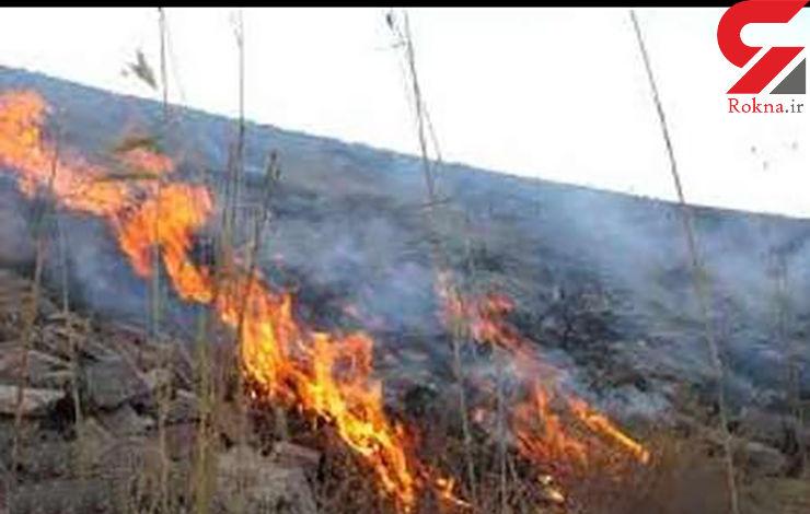 آتش سوزی مراتع اندیمشک مهار شد