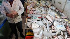 فروش کوسه ماهی به جای شیر ماهی در بازار ماهی فروشان