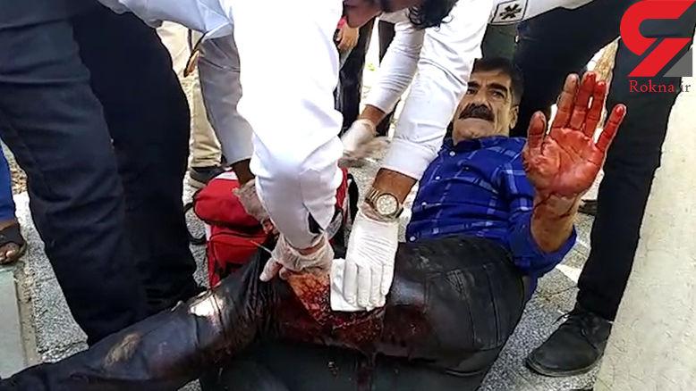 هجوم گرازهای وحشی به شهر میناب به خاطر سیل + فیلم زخمی شدن  مرد مینابی