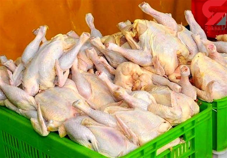 مرغ باز گران شد
