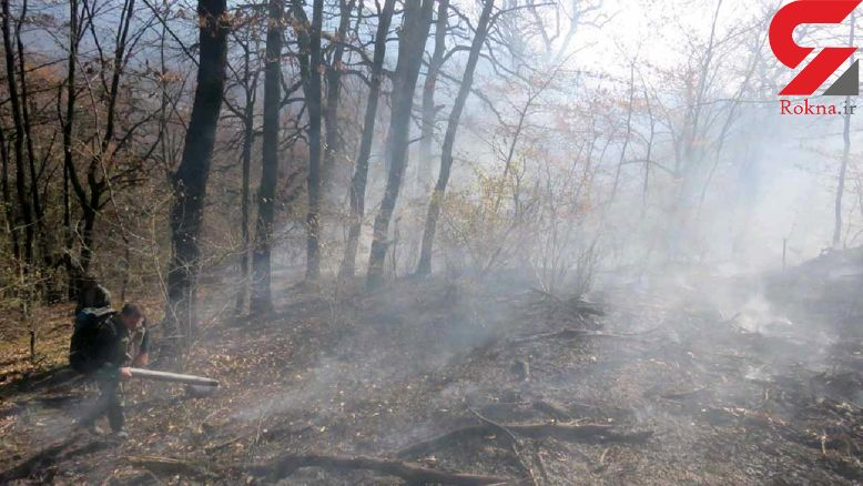 آتش سوزی در پارک ملی گلستان