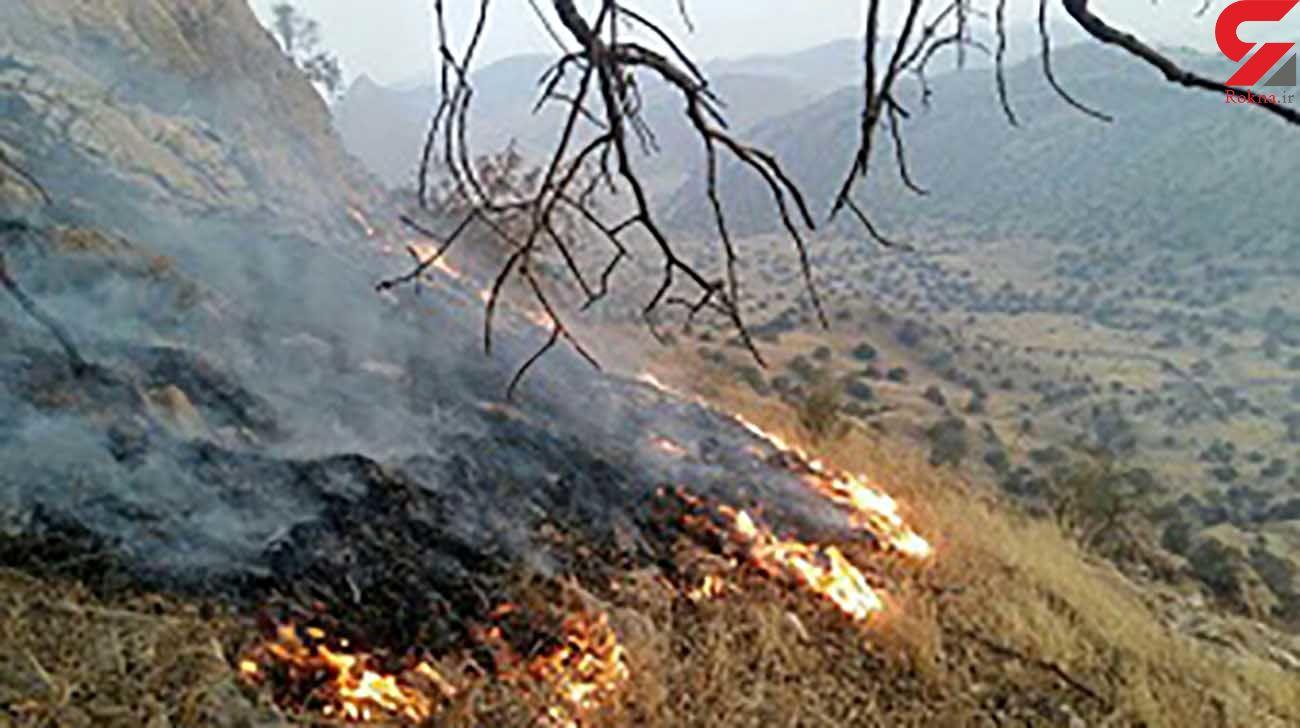 مهار آتش سوزی منابع طبیعی در اندیکا