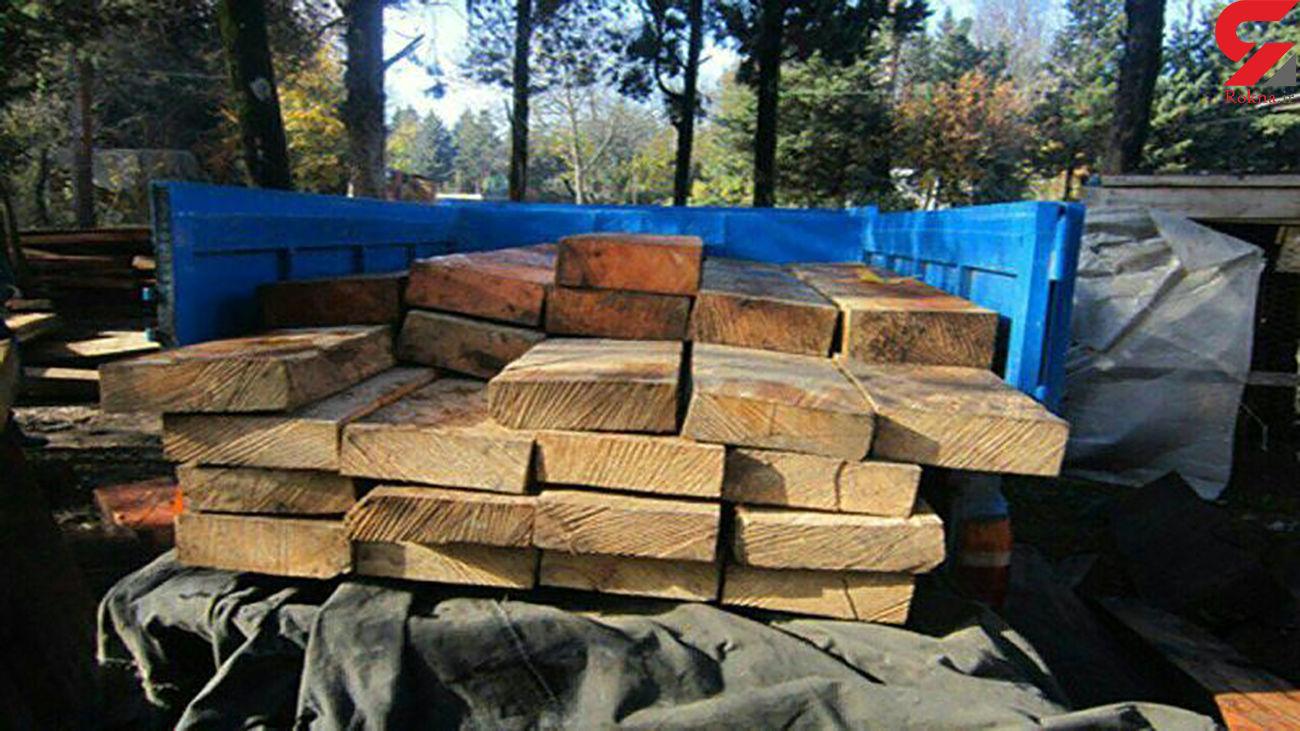 کشف ۷ تن چوب قاچاق در نور