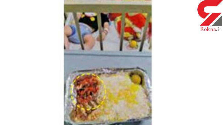 پیدا شدن سوسک و تخم سوسک در غذای بیمار بستری در یکی از بیمارستانهای شمال تهران + عکس
