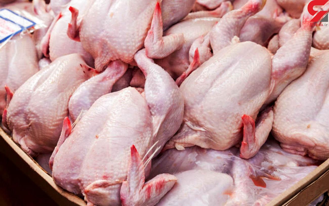پیش بینی قیمت مرغ در دی ماه 99