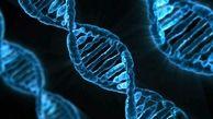ساخت یک ارگانیسم زنده با ژنهای مصنوعی