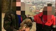 بازداشت جوانی که گوش یک توله سگ را بریده بود / در ارومیه رخ داد + عکس