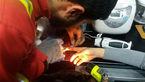 آتش نشانان زن جوان تهرانی را از شر گوشتکوب برقی خلاص کردند!+عکس