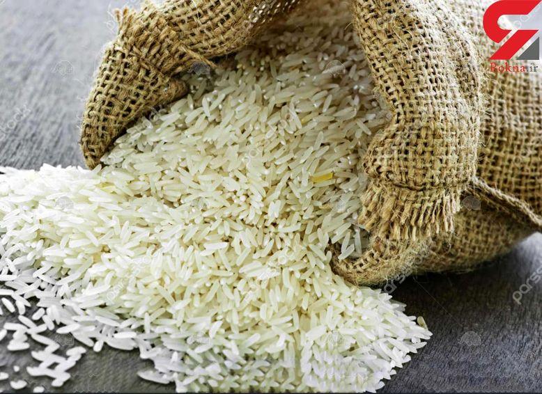 ابراهیمی: حجم واردات برنج زیاد است/ دولت نظارت بیشتری کند