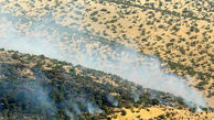 جنگلهای پلدختر در آتش سوخت