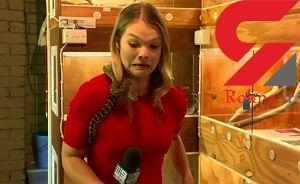 حمله مار وحشی به میکروفن خانم خبرنگار + فیلم / استرالیا