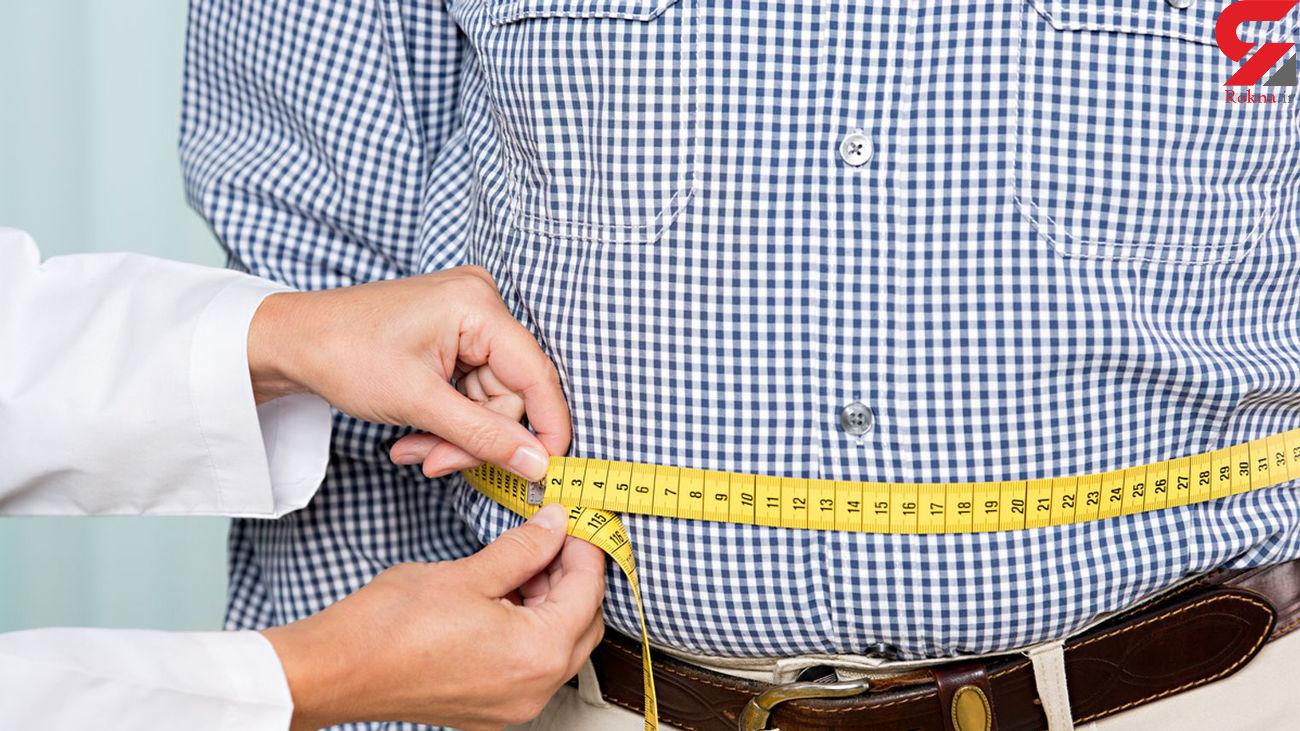 درمان چاقی با یک پروتئین