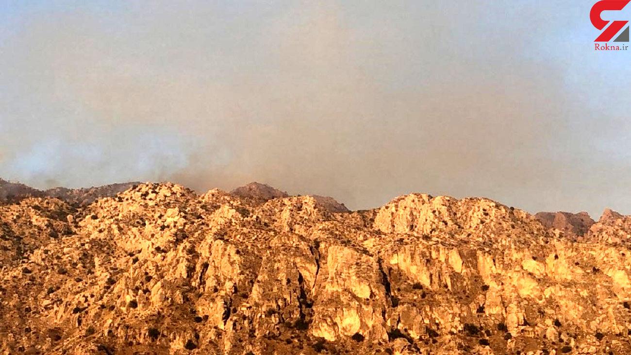 آتش سوزی در ارتفاعات بوشکان دشتستان