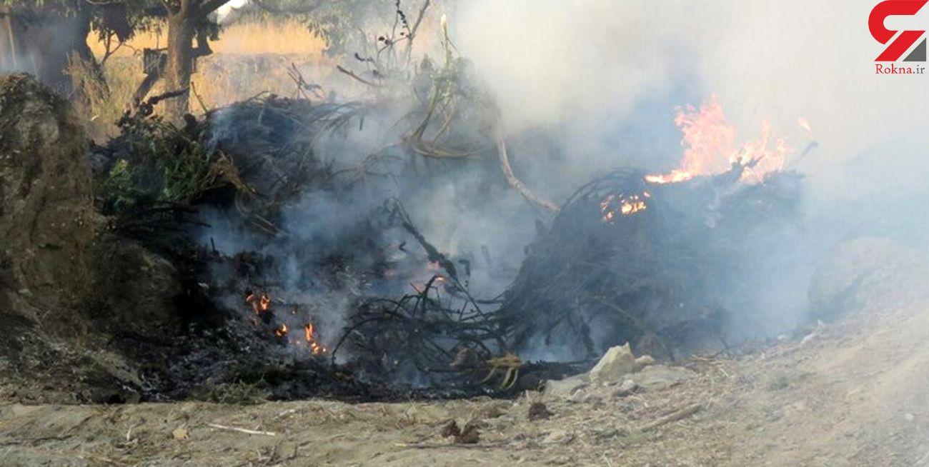 حمله سپاه سمنان به مزرعه شیطانی + عکس