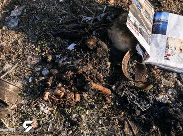 29 عکس دیده نشده از سقوط مرگبار هواپیمای اوکراینی / اختصاصی