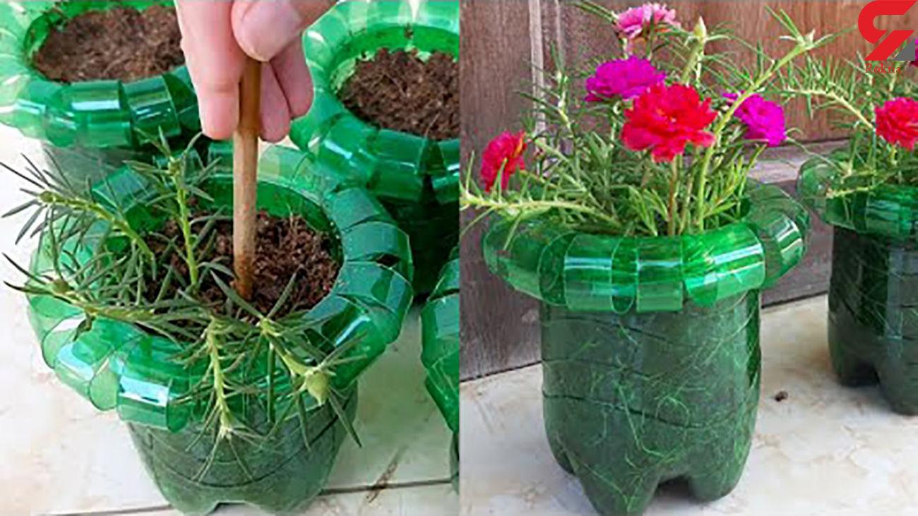 این گلدان ها با بطری های پلاستیکی ساخته شده + فیلم