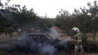 خاکستر شدن خودروهای پراید و پژو در تهران+ تصاویر