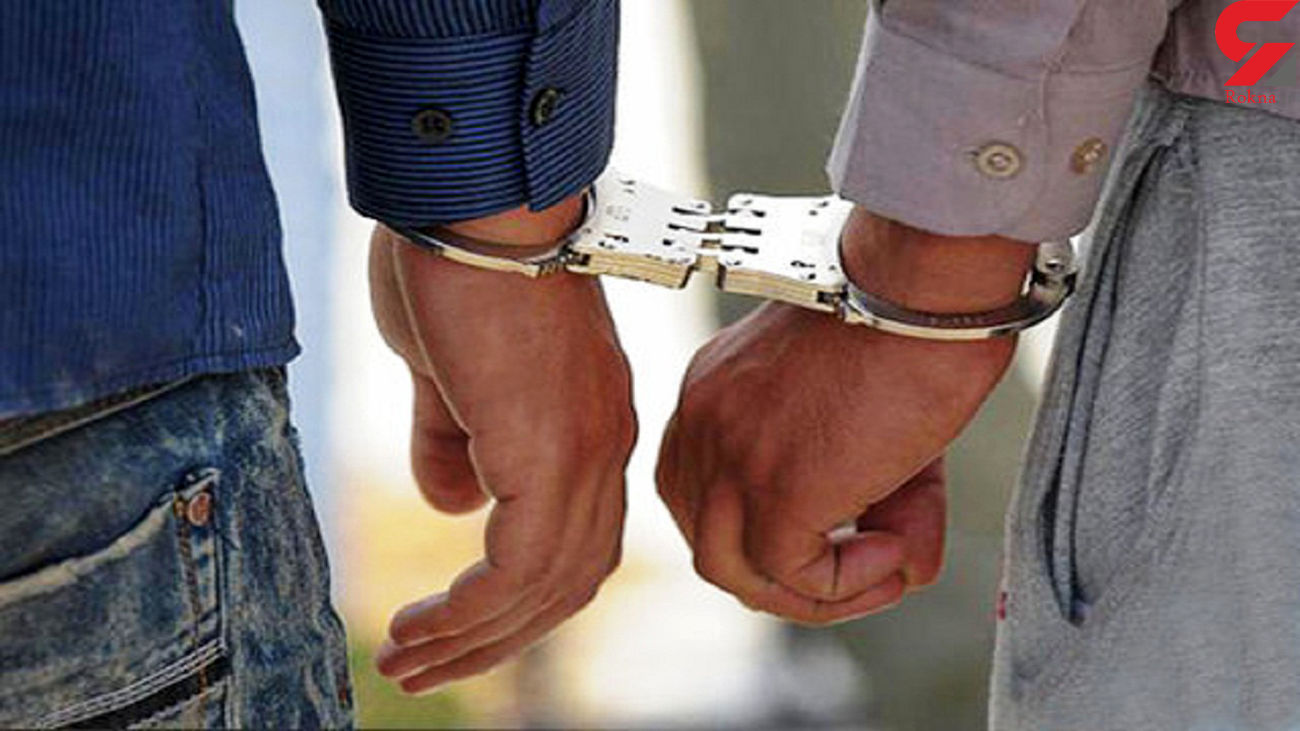 دستگیری 16 سارق با 18 فقره سرقت در زابل