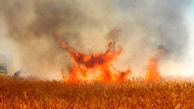 شعله های آتش در مزارع مهران