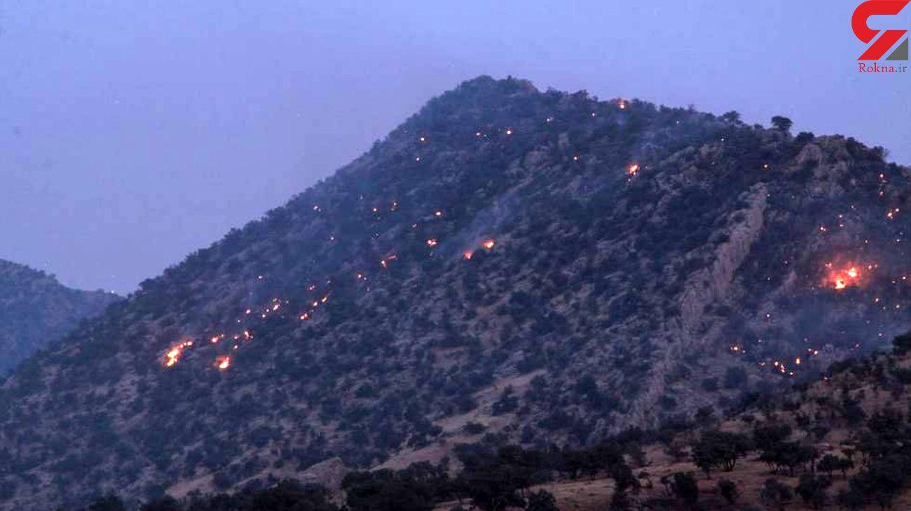 سرهنگ عباس نژاد: آتش سوزی جنگل های زاگرس در سه استان کشور / عدم تخصیص بودجه لازم برای اطفای حریق در سال 1400+ فیلم