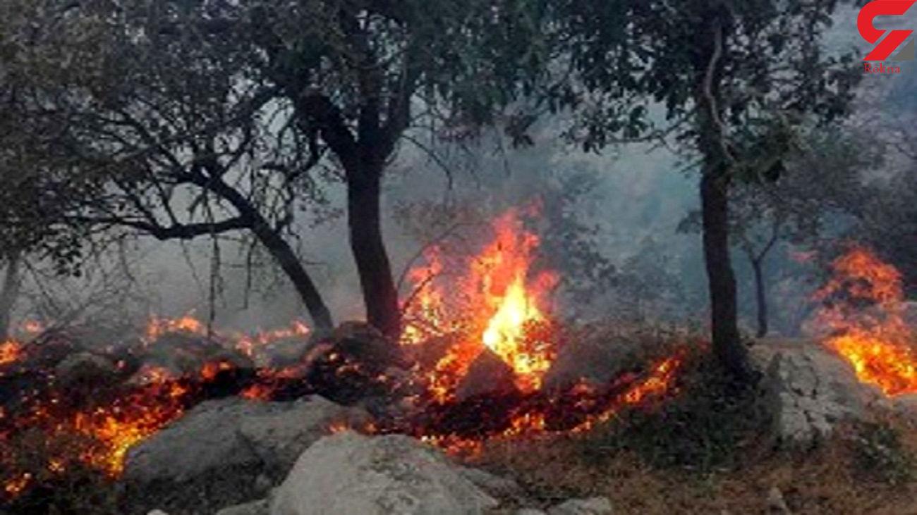مهمانی آتش در جنگل های اندیکا به روز نهم رسید