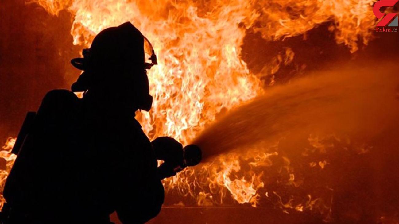 شرکت تولید کارتن در آتش سوخت