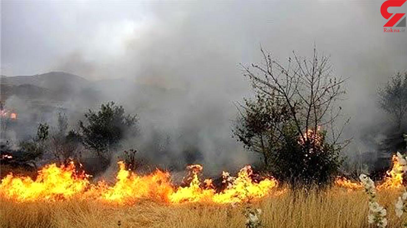 110 هکتار جار و 226 انبار کاه درآتش سوخت/ 12 کشاورز زمین گیر شدند