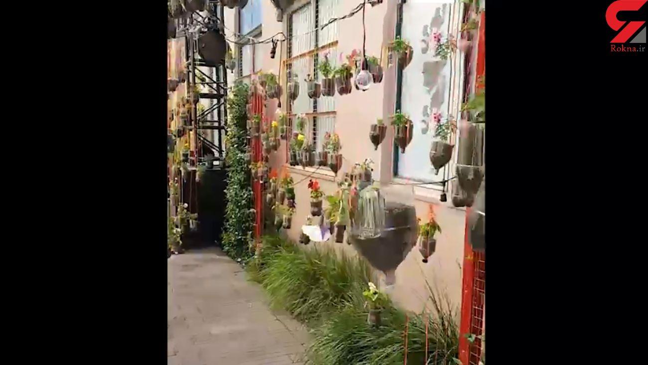 گلدان های جالب و رنگارنگ + فیلم